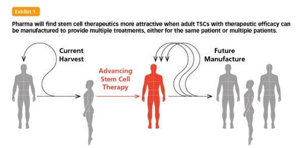 Stem Cell Therapy: Resolving the Mismatch