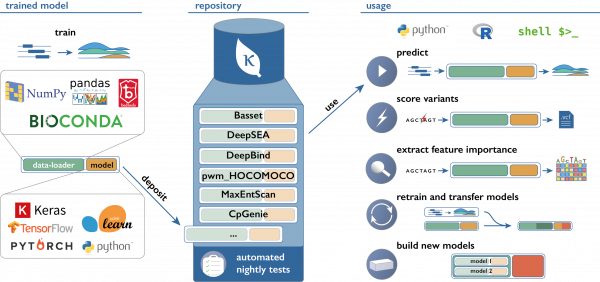 Leveraging AI to Drive a Virtuous Cycle Between Drug Development and